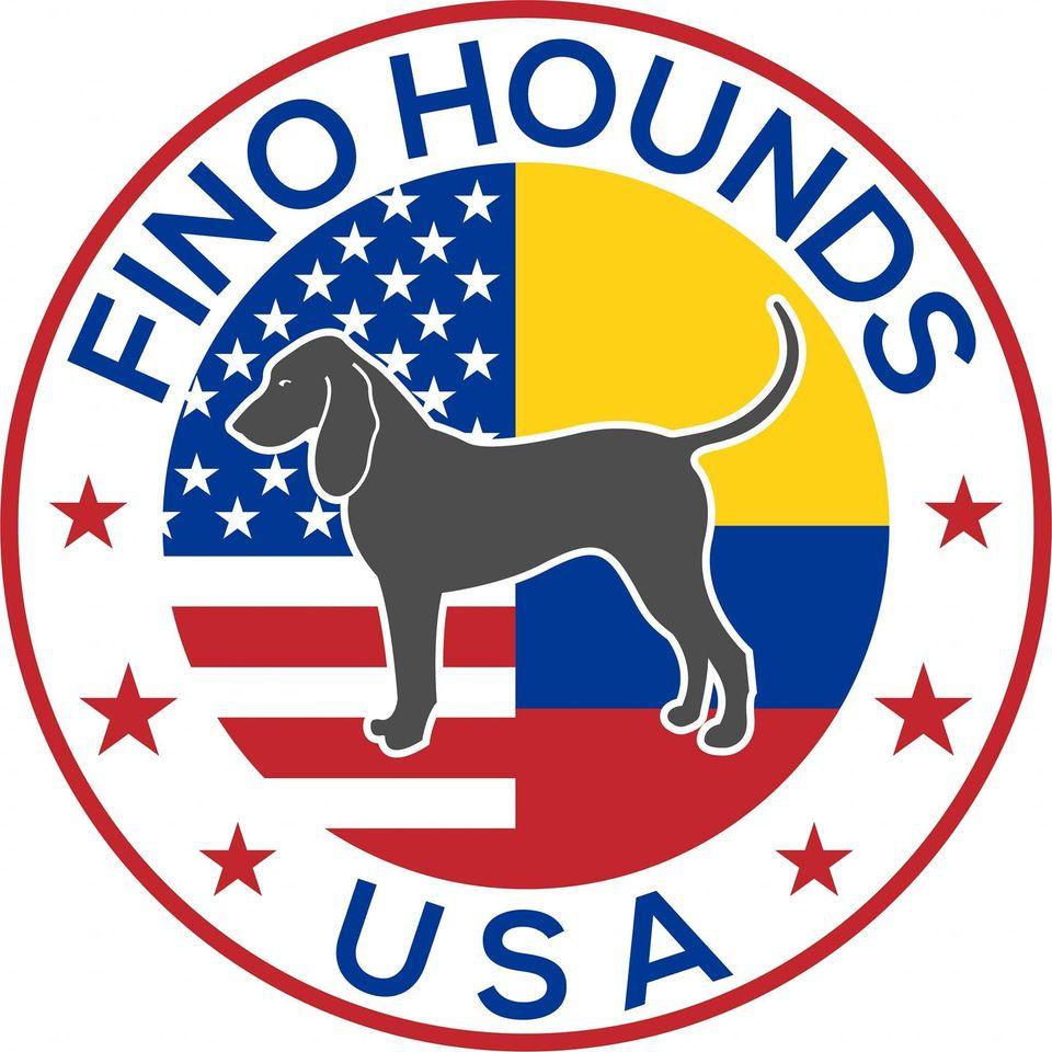 fino hound
